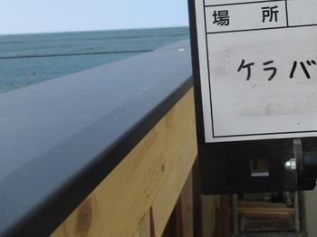 屋根施工→